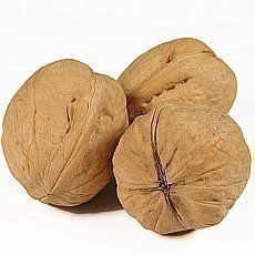 Likér ořechovka - recepty