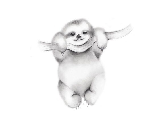 Sloth Drawing Print Nursery Wall Decor Baby Animal Art Baby Sloth Sketch Gender Neutral Baby Sloth Pict Baby Animal Art Baby Animal Drawings Sloth Drawing