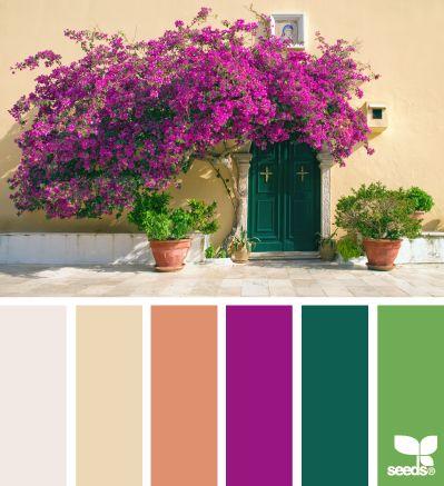 global hues color escape - gorgeous color palette inspiration idea - pinks and greens