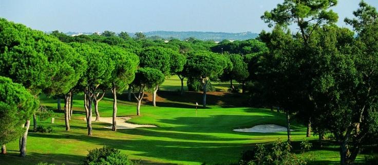 Golf Academy Vila Sol Vilamoura Algarve school lessons instruction