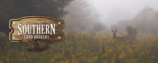 The Southern Land Brokers handle hunting leases for both landowners who want to lease the hunting rights on their land... http://www.thesouthernlandbrokers.com/alabama-hunting-land-for-lease/