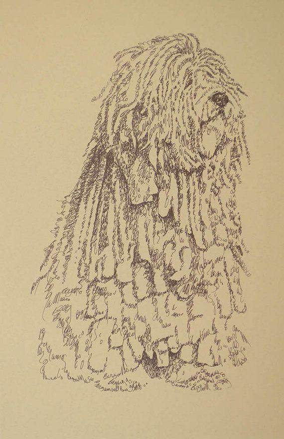 Ritratto di arte cane cane da pastore bergamasco è una stampa firmata e numerata da un disegno originale artista Stephen Kline. Nome della razza più e