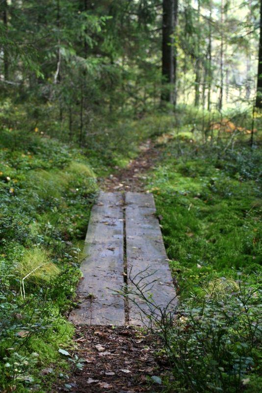 In Finland dense forests always await somewhere nearby. www.visitporvoo.fi