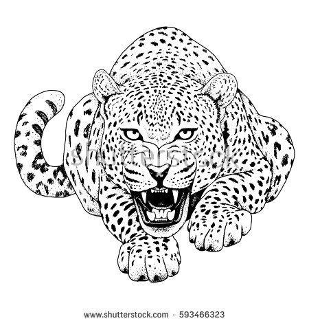 Картинки по запросу jaguar tattoo
