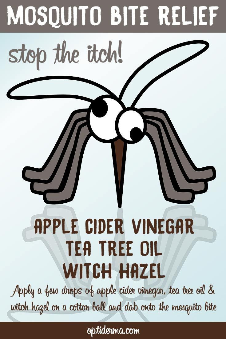 How to stop a mosquito bite from itching: apply a few drops of apple cider vinegar, tea tree essential oil and witch hazel to a cotton ball and dab onto the mosquito bite! Find more natural remedies for mosquito bites: http://www.optiderma.com/articles/natural-remedies-mosquito-bite-itching/