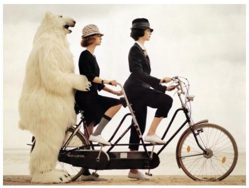 proponiti: http://www.sevendays-in.com/proponiti.html     La vita è come andare in bicicletta: se vuoi stare in equilibrio devi muoverti. - Albert Einstein
