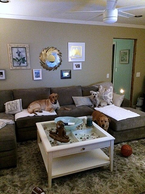 Family room painted with Bennington gray ..new sectional from Raymour and Flannigan ..Artemis 2