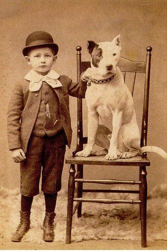 Child posing with his pitbull.