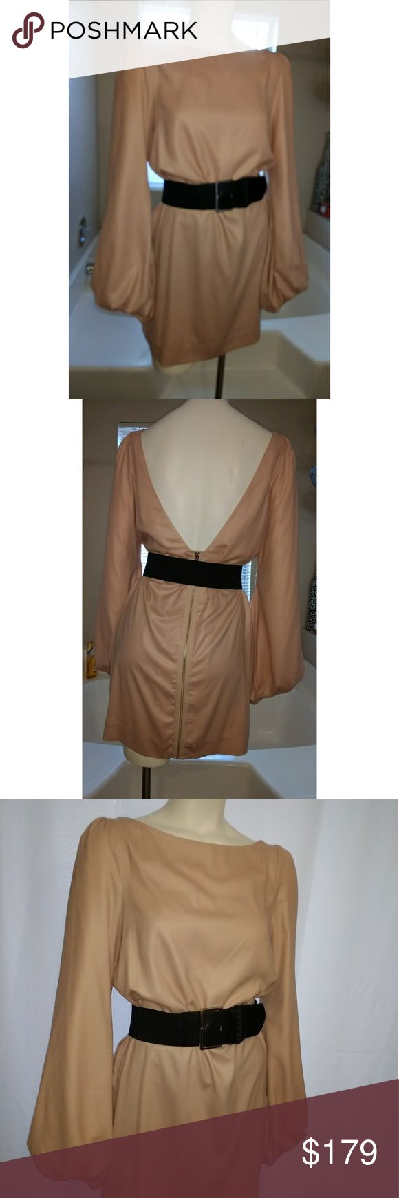 """Elizabeth and James Long Sleeve V-Back Dress Super chic, classy, sexy! I love the back of this dress and the sleeves! It's a beautiful pink color. Excellent condition! Will fit a size 4 as well. Features:   • Long Puffy Sleeves  • Open V-Back  • Fully Lined  • Crew Neckline  • 100% Polyester  • Lining 55% Nylon - 45% Silk  • Bust 17""""  • Total Length 33"""" Elizabeth and James Dresses Long Sleeve"""