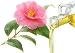 Λάδι Καμέλιας (Camellia Seed Oil)