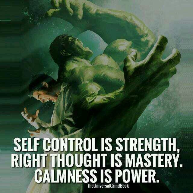 Hulk Quotes 511 Best Wise & Wisdom Images On Pinterest  Inspire Quotes