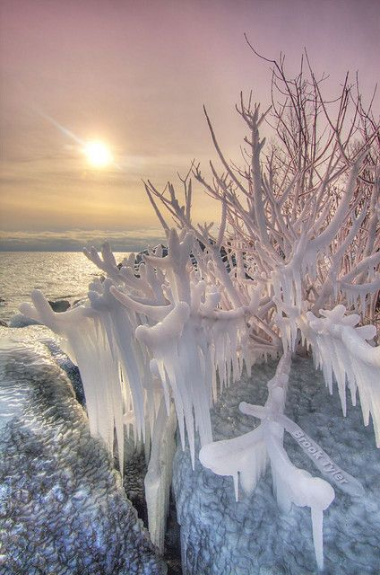 Winter at Humber Bay Park, Lake Ontario, Toronto, Ontario, Canada   by Brook Tyler, via Flickr