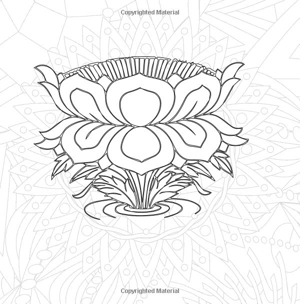 j benson coloring pages | Amazon.com: Color In Bloom: Adult Coloring for Relaxation ...