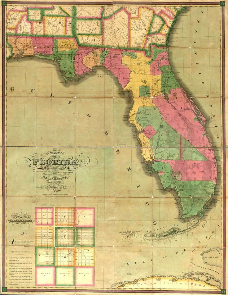 This map is of Florida in the