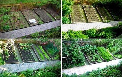25 best backyard landscapes images on pinterest backyard for Fun vegetable garden ideas