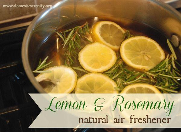 DIY natural air freshener :: lemon and rosemary simmering pot