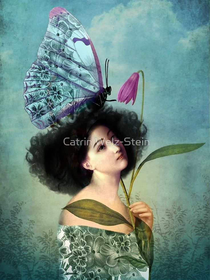 In the Butterfly Garden by Catrin Welz-Stein