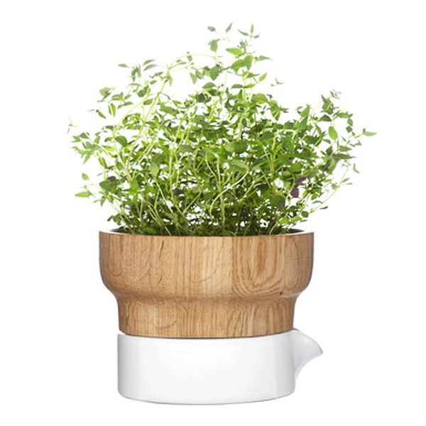 The fix herb pot creates a modern, organic design by incorporating ceramic and oak | Urbilis http://urbilis.com/collections/tabletop-all-products/products/fix-herb-pot