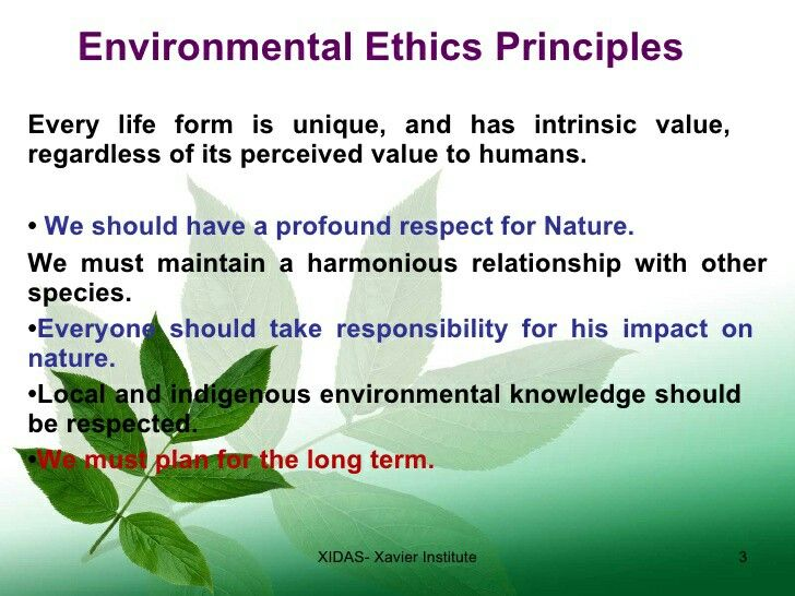 Term Paper Essay Essay On Environmental Ethics Environmental Ethics Human Needs Are More  Important Narrative Essay Examples For High School also Essay Science  Best Environment Environmental Science Images On Pinterest  A  Proposal Example Essay