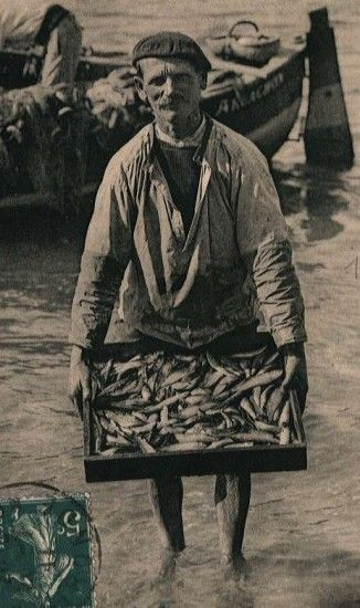 Sardinier - 1910 - Métier d'antan                                                                                                                                                                                 Plus