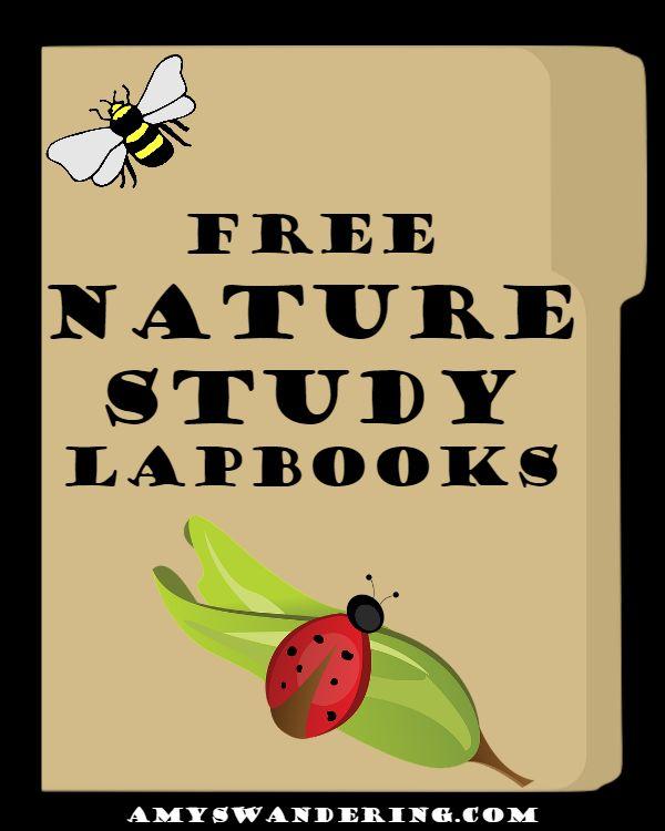 Great Homeschooling Links: Fall Nature Study