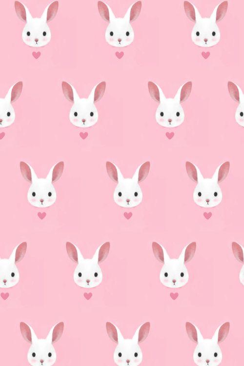 lovely rabbit pattern