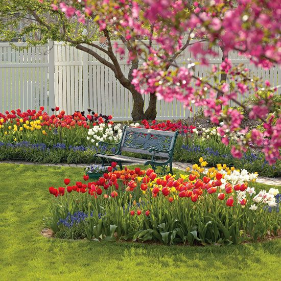 Spring Flowers And Yard Landscaping Ideas 20 Tulip Bed: 78 Best GARDEN OF TULIPS Images On Pinterest