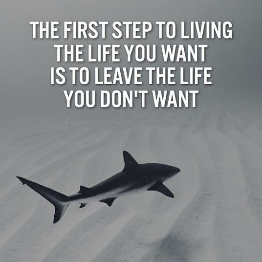 So many people stop dreaming big because they're scared to have that safety net taken away from them. Don't let that be you! Embrace your fear and get excited about it because it means you're onto something good! 10Xincome.com
