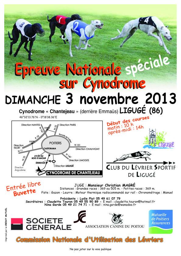 Course de lévriers, épreuve nationale sur cynodrome. Le dimanche 3 novembre 2013 à Ligugé.