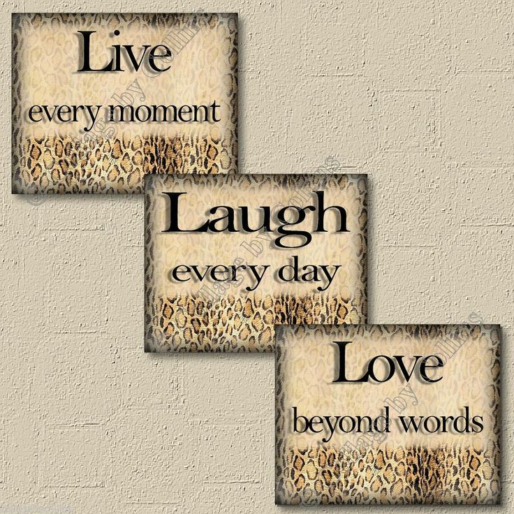 Leopard Cheetah Wall Art Decor Prints LIVE LAUGH LOVE Inspirational Words Quotes