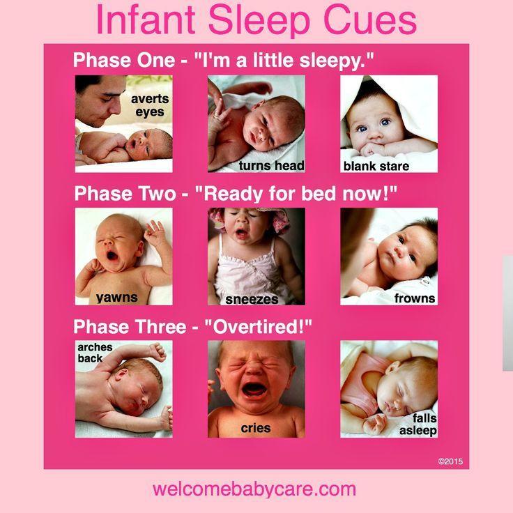Baby Sleep Cues Infantsleep Baby Sleep Schedule Baby Sleep Problems Baby Sleep