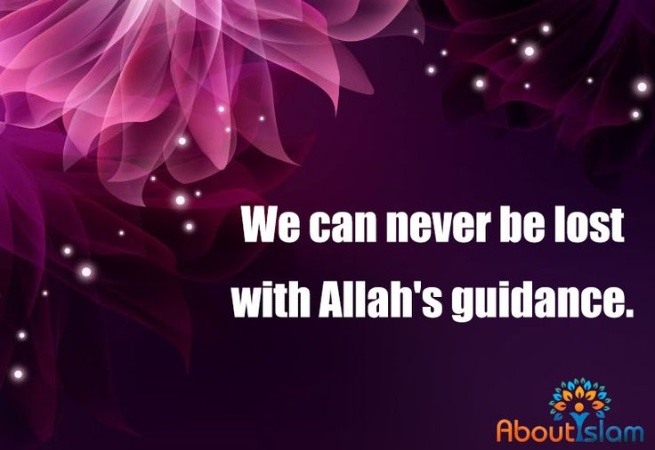 Allah's guidance is our GPS! ☝️