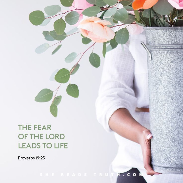 "#SheReadsTruth What does it mean to ""fear"" God? Revere God as holy, draw near to him."