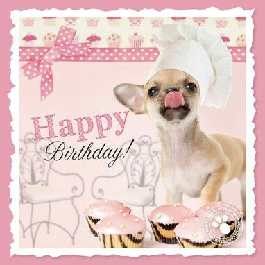 Birthday kok