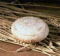 Castilla/La Mancha Queso Torta Montes de Toledo--Recomendado con vinos blancos de alta graduación o con vinos blancos de fermentación en barrica, pero servidos bien fríos.Se consume directamente con una cuchara, extrayendo la pasta que se unta sobre pan tostado o de leña.