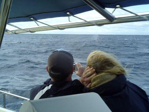 18.08.2014 Imagine Whale Watch