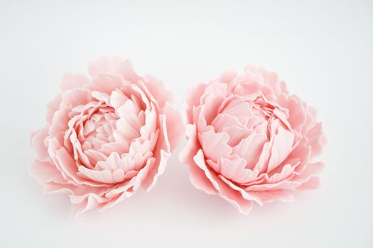 Gum paste peonies • CakeJournal.com