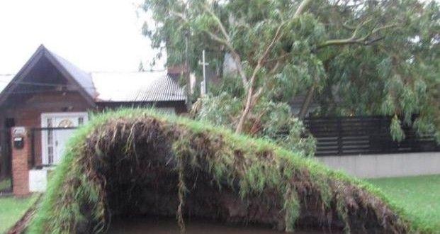 Cayeron más de 100 milímetros de agua, sigue la lluvia y continúa el alerta – Panorama Rosario