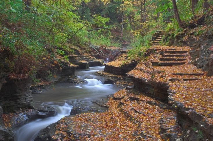 ithaca new york | ... -03: Gorge trail in Buttermilk Falls State Park near Ithaca. New York