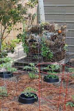 Always Room for Recycling Yard Waste - Whether gardening in a large space, small lot, or even a roof top garden, there is always room for composting.