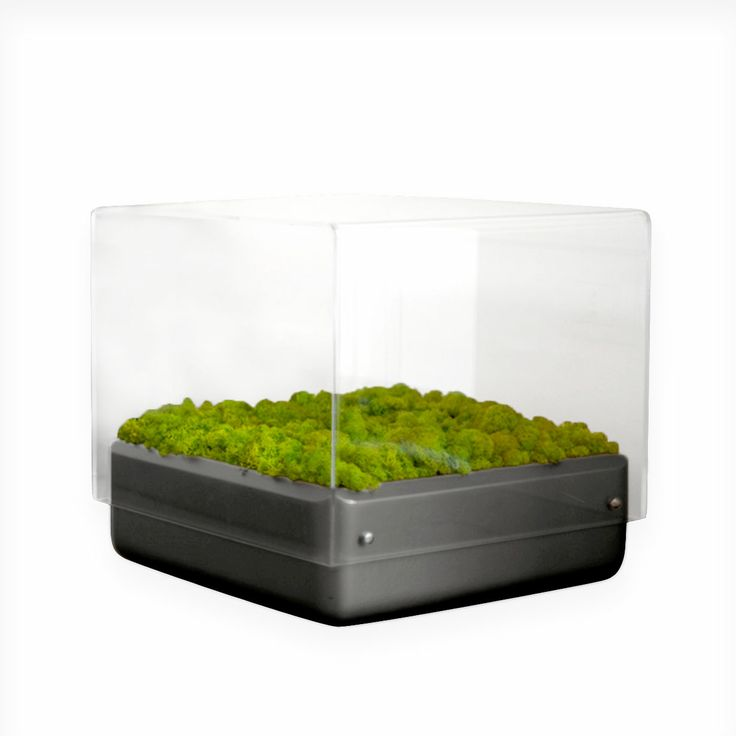 Tavolino Moss 40x40cm - Lovethesign app