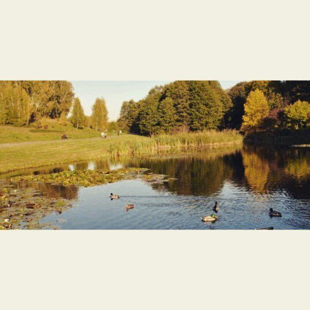 zdj: www.visitbydgoszcz.pl Chcesz odpocząć po ciężkim dniu? Zapraszamy do Myślęcinka! #Myslecinek #nowakampania #RozkoszwPlenerze #odpoczynek #relaks #natura #Bydgoszcz #likeforlike #l4l #likeback #f4f