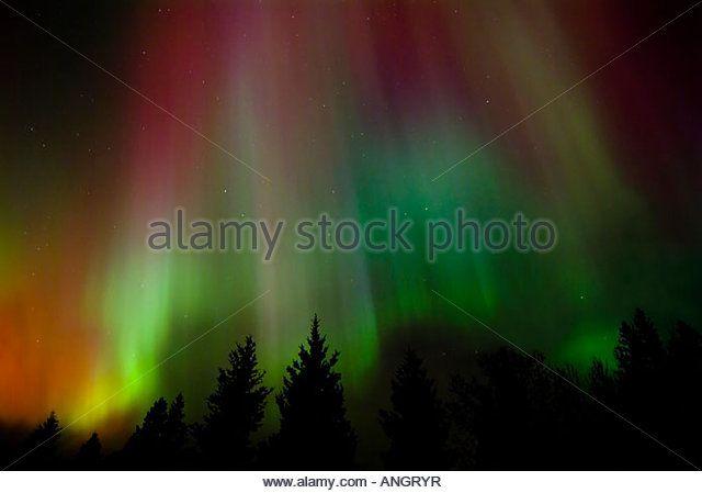 Northern lights or aurora, Birds Hill Provincial Park, Manitoba, Canada. - Stock Image