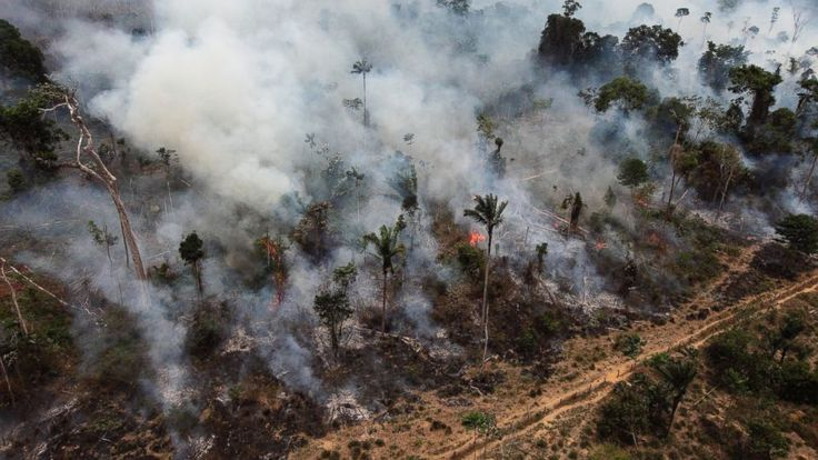 Brazil is considering measures that would roll back environmental protections and make it difficult to meet its Paris climate accord targets — a signal it is stepping back from its global leadership on climate change just as the United States is also retreating.  Congress has already passed... - #Blow, #Brazil, #Environment, #Pact, #Paris, #Rollback, #Rules, #TopStories