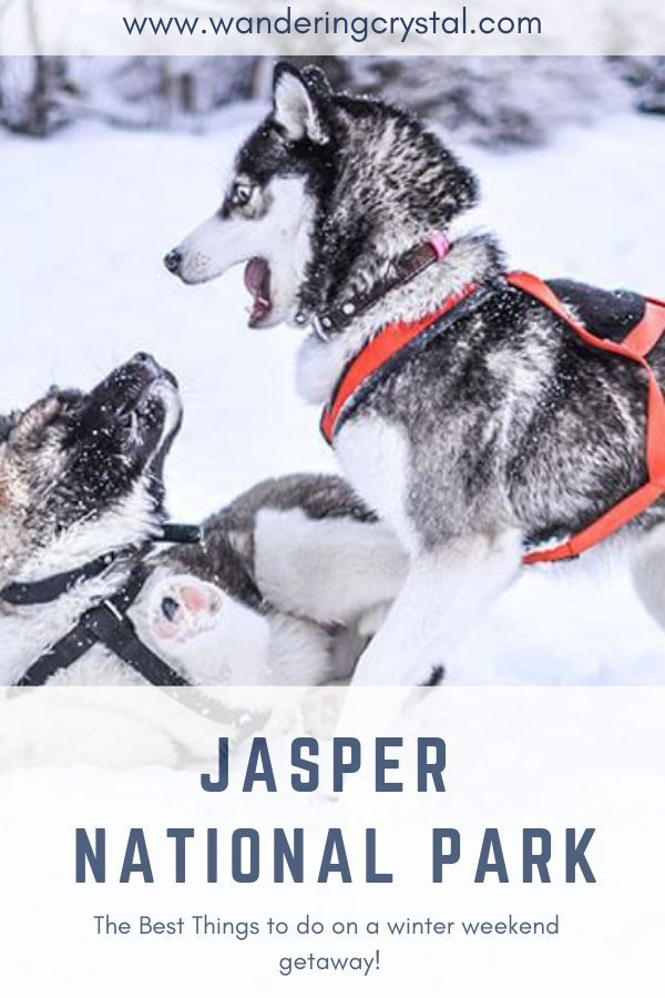 The Best Things To Do In Jasper National Park On A Winter Weekend