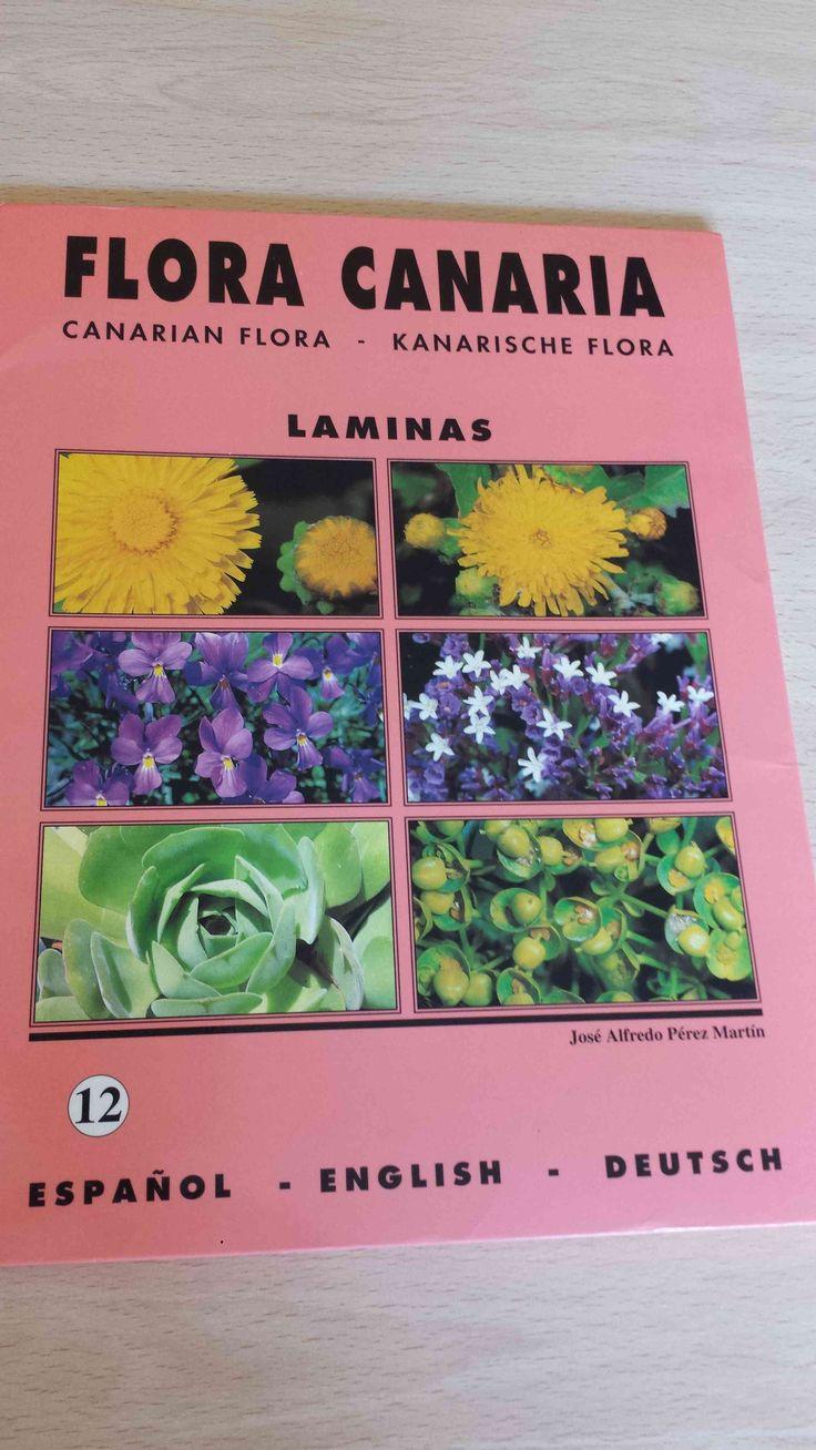20 láminas de Flora Canaria. Canarian flora. Kanarischen Flora. Carpeta 12. Disponible en Ebay: http://www.ebay.es/itm/20-laminas-de-Flora-Canaria-Canarian-flora-Kanarischen-Flora-Carpeta-12-/122057529628?hash=item1c6b32191c:g:9EcAAOSwdG9XRD-r