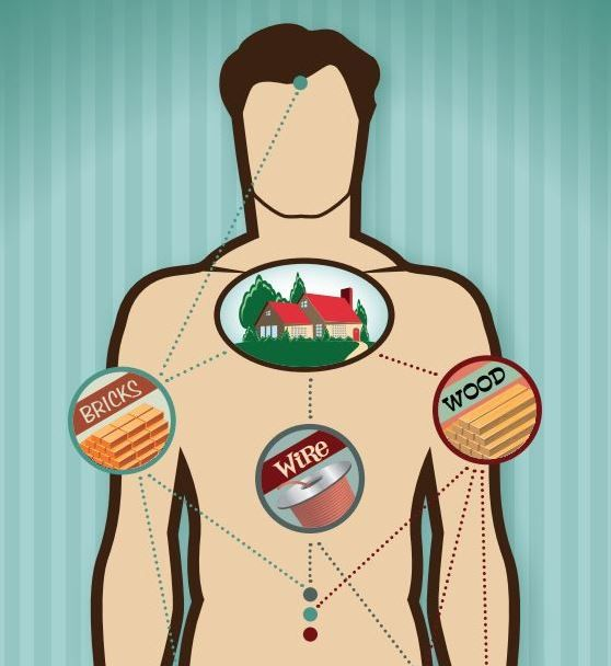 Interesting article about how we proess protein...and what happens if we eat too much!