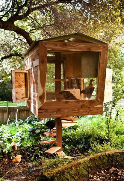 DIY Hønsehus, med egen hønse vindeltrappe