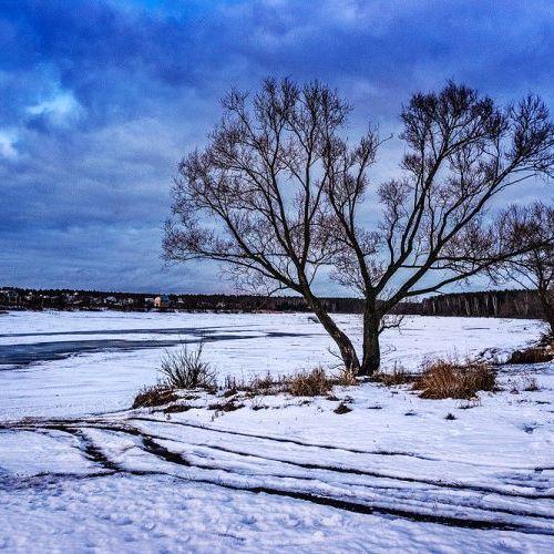 Многообразие форм природы... Это место совсем не узнать в другое время года... Обязательно покажу как тут красиво летом. #фотоизабеллазубкова #зима #снег #дерево #озеро #природа #пейзаж #путешествия #landscape #nature #travel #scenery #beautiful #view #scenic #tourism #natural #tree #environment #land #lake #Winter #snow #izabellazip #фотограф