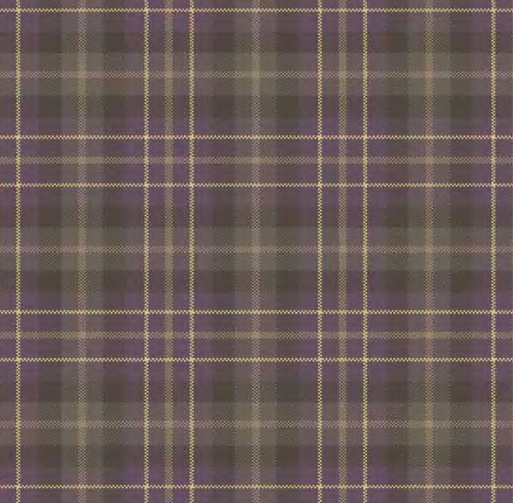 15 Best Plaid Carpeting Images On Pinterest Tartan